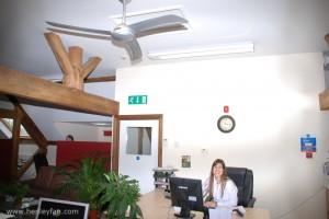 090_Henley_Ceiling_Fan_Hunter_osprey_office_002